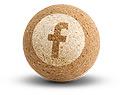 Bonzini sur Facebook
